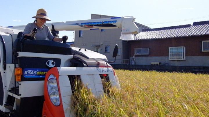 稲刈りコンバイン
